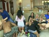 Boring Bachelor Party Become Pure Fun When Group Of Cock Starving Bitches Came In
